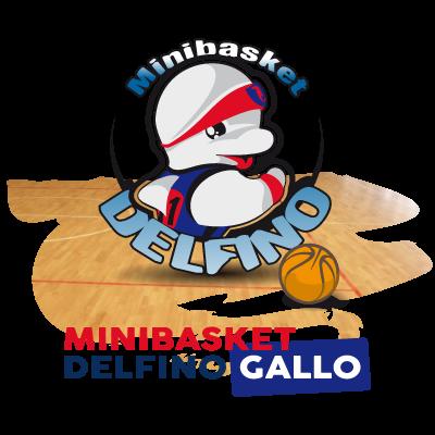 Minibasket Delfino Gallo